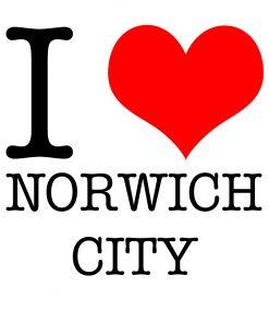 I Love Norwich City T-shirt
